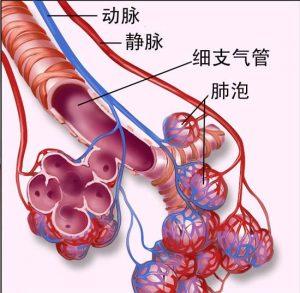 AZD9291治疗非小细胞肺癌有效性高吗?