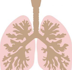 """T790M 突变非小细胞肺癌的""""标准治疗""""——AZD9291。"""