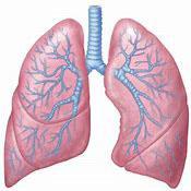 AZD9291治肺癌效果有多好?